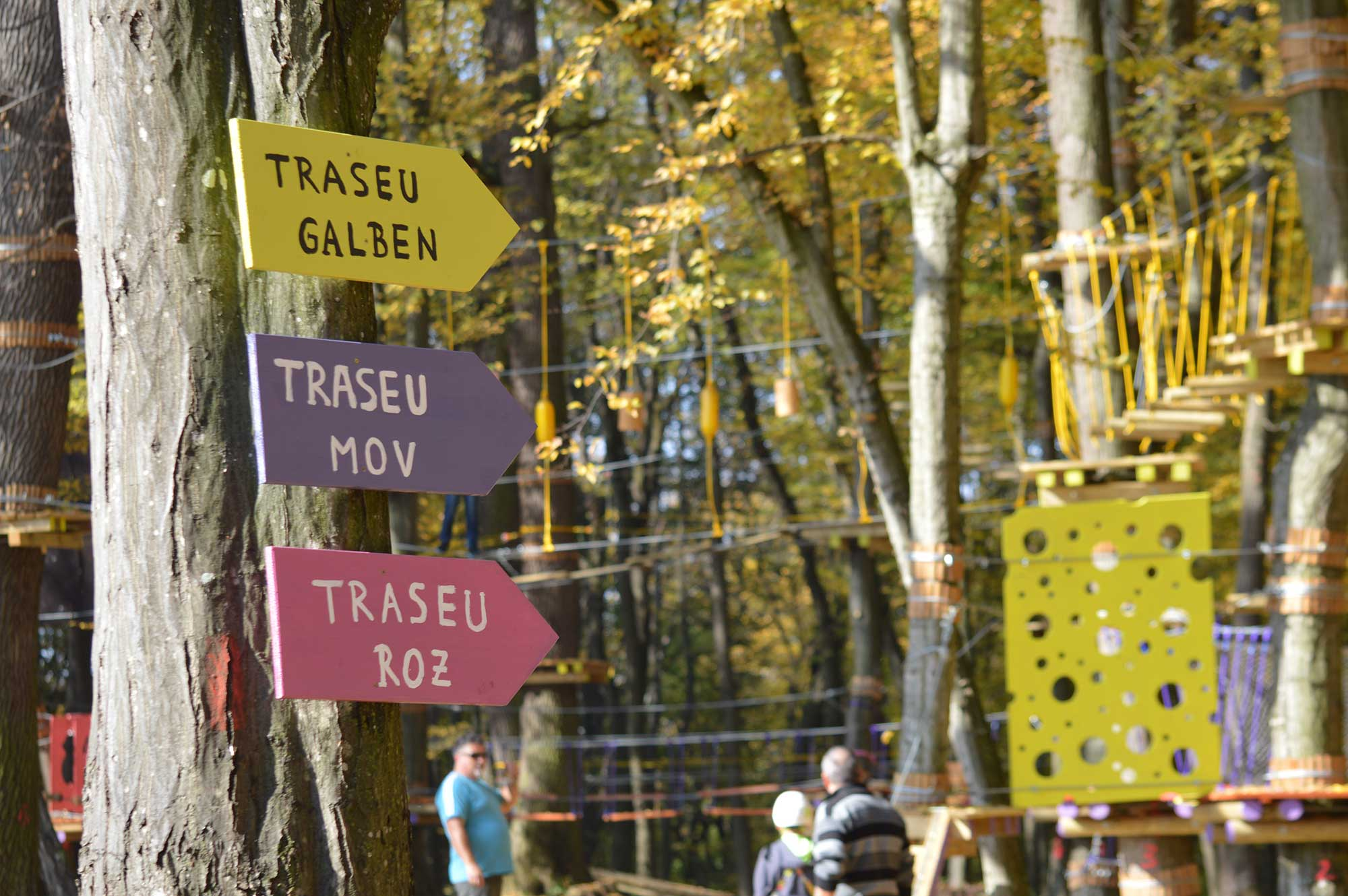 Club Aventura Sighișoara - indicatoare trasee copii